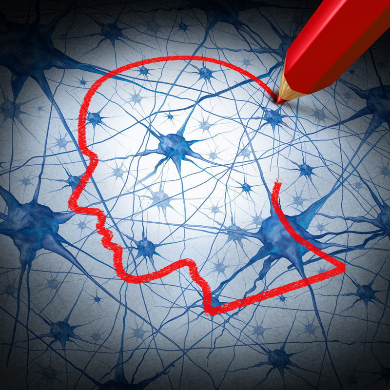 Picture of brain neurons with outline of a head drawn over in red